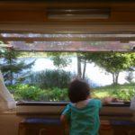 白樺湖は日常と夏の暑さを忘れられる高原リゾート!【長野】おすすめスポット
