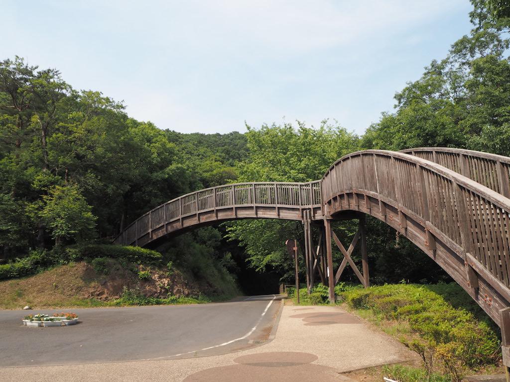 みかも山公園は花の百名山にも選ばれた栃木最大の都市公園!【栃木】おすすめスポット