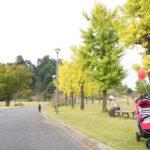 観音山ファミリーパークは公園デビューに最適な子育て応援パーク!【群馬】おすすめスポット