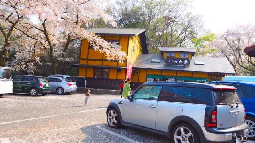 高崎観音山は高崎のシンボル白衣大観音が目印のお花見スポット!【群馬】おすすめスポット