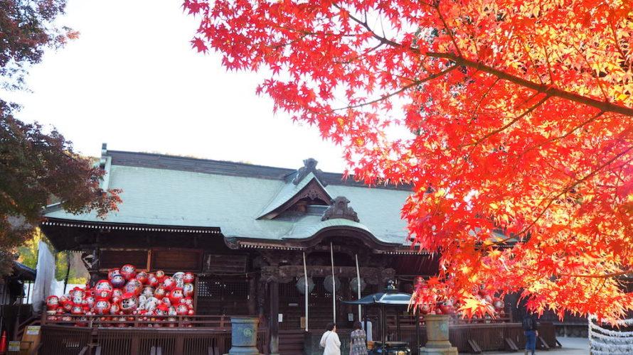 少林山達磨寺で見られるダルマと紅葉の鮮やかなコラボレーション!【群馬】おすすめスポット