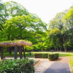 群馬の森は美術館や博物館もある芝生と森に囲まれた癒しスポット!【群馬】おすすめスポット