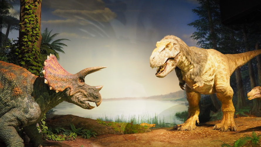 ミュージアムパーク茨城県自然博物館は子供も大人も大満足の博物館!【茨城】おすすめスポット