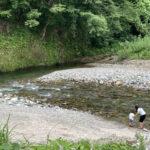 五十沢キャンプ場は川遊びが楽しめる自然いっぱいのキャンプ場!【新潟】おすすめスポット
