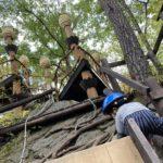 軽井沢おもちゃ王国は子ども大満足な玩具と自然がいっぱいの遊園地!【群馬】おすすめスポット