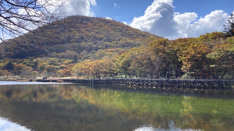 赤城山覚満淵は紅葉と湿原が絶景な初心者向けのハイキングルート!【群馬】おすすめスポット
