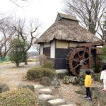 愛宕山ふるさと公園は庭園や水鳥観察に日本の原風景を感じる穴場の公園!【群馬】おすすめスポット