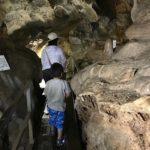 小平の里は鍾乳洞や植物園がある大自然溢れる冒険スポット!【群馬】おすすめスポット